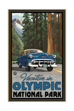 Olympic National Park RTW Road Trip Pal 2885 Photographic Print by Paul A Lanquist