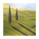 Rolling Hills I Photographic Print by Herb Dickinson