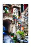 Rustic Alley In Corniglia, Cinque Terre, Italy Photographic Print by George Oze