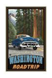 Washington Road Trip Pal 064 Photographic Print by Paul A Lanquist