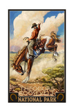 Bucking Horse Theodore Roosevelt National Park 811 Photographic Print by Paul A Lanquist
