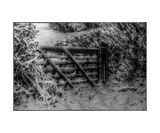 Winter Gate Photographic Print by J A Evans