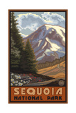 Sequoia National Park Mountain Springtime Pal 1214 Photographic Print by Paul A Lanquist