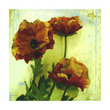 Poppies II Photographic Print by Herb Dickinson