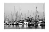 Santa Barbara Boats Mono Photographic Print by John Gusky