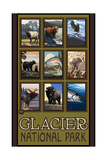 Glacier National Park Collage Pal 4044 Photographic Print by Paul A Lanquist