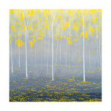 Yellow Forest Photographic Print by Herb Dickinson