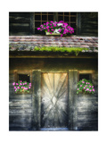 Swiss Barn Door with Flowers Photographic Print by George Oze