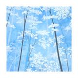 Spring Forest I Reproduction photographique par Herb Dickinson