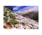 On The Eagle Lake Trail, Mineral King Photographic Print by Ronald A Dahlquist
