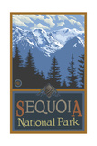 Sequoia National Park Snowy Mountain Ridges Photographic Print by Paul A Lanquist