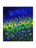 Blue Poppies 674160 Photographic Print by  Ledent