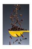 1 Tablespoon Whole Clove Photographic Print by Steve Gadomski