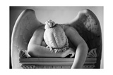 Weeping Angel 2 Photographic Print by John Gusky
