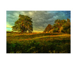 English Countryside Photographic Print by J A Evans