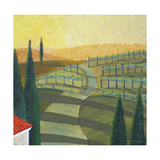 Tuscany Vinnicola II Photographic Print by Herb Dickinson