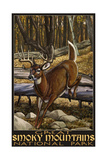 Great Smoky Mountains National Park Whitetail deer Prints by Paul A Lanquist