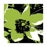 Blooming Green Photographic Print by Herb Dickinson