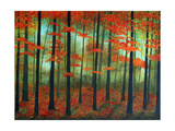 Forest Dawn Photographic Print by Herb Dickinson
