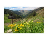 Looking Back Down Mineral King Valley Photographic Print by Ronald A Dahlquist