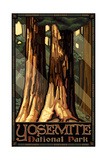 Yosemite Sequoia Tree PAL 93 Photographic Print by Paul A Lanquist