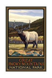 Great Smoky Mountains National Park Elk Pal 3140 Photographic Print by Paul A Lanquist