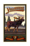 Yellowstone National Park Moose Pal 059 Photographic Print by Paul A Lanquist
