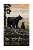 Great Smoky Mountains Black Bear Family Pal 1278 Photographic Print by Paul A Lanquist