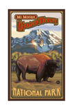 Mount Moran Grand Teton Buffalo Pal 044 Photographic Print by Paul A Lanquist