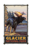 Glacier National Park Moose Pal 747 Photographic Print by Paul A Lanquist