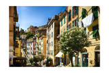 Colorful Street in Riomaggiore, Liguria, Italy Photographic Print by George Oze