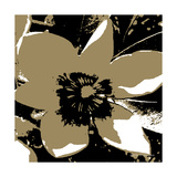 Blooming Brown Photographic Print by Herb Dickinson
