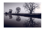 Foggy Morn BW Photographic Print by Steve Gadomski