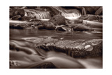 Roaring Fork Great Smokey Mountains BW Photographic Print by Steve Gadomski