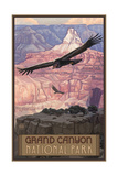 Grand Canyon Condor Pal 1049 Photographic Print by Paul A Lanquist