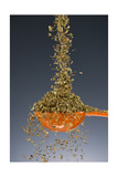 1 Tablespoon Oregano Photographic Print by Steve Gadomski