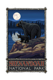 Shenandoah National Park Black Bears Pal 2696 Photographic Print by Paul A Lanquist