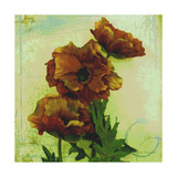 Poppies I Photographic Print by Herb Dickinson