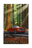 Yosemite National Park MIR Road Trip Photographic Print by Paul A Lanquist