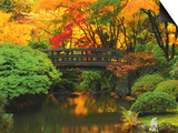 Moon Bridge in Autumn: Portland Japanese Garden, Portland, Oregon, USA Posters by Michel Hersen