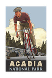 Bicycle Acadia National Park Pal 1744 Photographic Print by Paul A Lanquist
