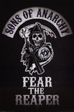 Sons of Anarchy - Fear the Reaper アートポスター