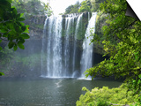 Rainbow Falls, Kerikeri, Northland, New Zealand Prints by David Wall