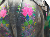 Elephant Decorated with Colorful Painting at Elephant Festival, Jaipur, Rajasthan, India Posters by Keren Su