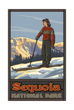Sequoia National Park Girl Skier Standing Pal 1220 Photographic Print by Paul A Lanquist