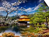NicholasHan - Gold Temple Japan Plakát