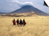 Maasai Warriors Stride across Golden Grass Plains at Foot of Ol Doinyo Lengai, 'Mountain of God' Prints by Nigel Pavitt