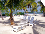 Palm Trees and Beach Chairs, Florida Keys, Florida, USA Prints by Terry Eggers