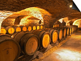 Oak Barrels in Cellar at Domaine Comte Senard, Aloxe-Corton, Bourgogne, France Prints by Per Karlsson