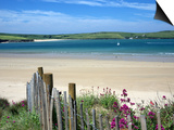 Padstow Bay, Padstow, Cornwall, England, United Kingdom, Europe Posters